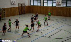 27.04.2017 SSV Einheit Teterow - Laager SV 03 Handball wJA