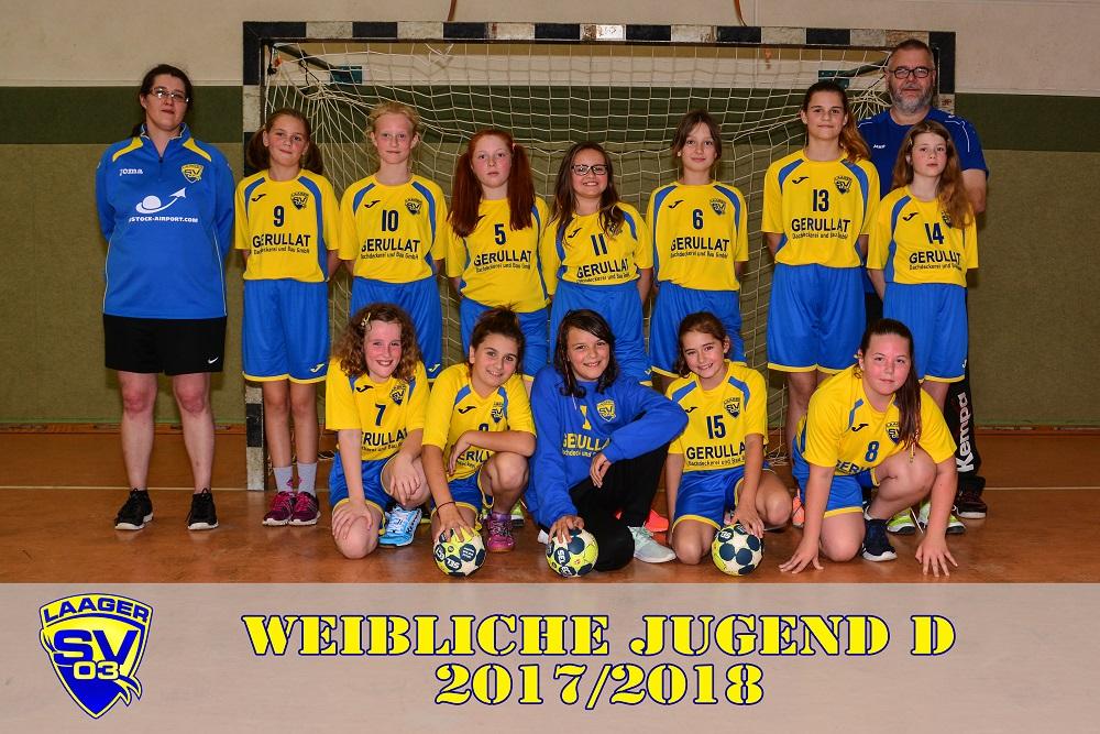 Laager SV 03 Handball wJD 2017/2018