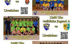 20171105 Handball_Heimspiele