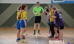 Laager SV 03 Handball wJD - Schwaaner SV