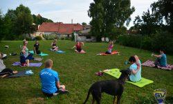 Laager SV 03 Fitness - Yoga