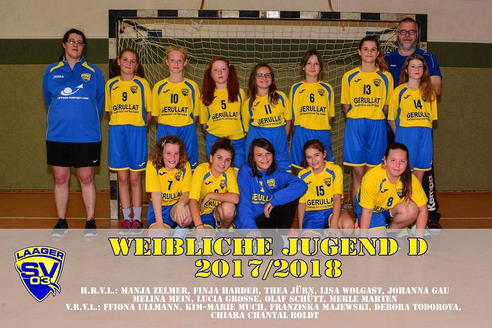 Laager SV 03 Handball weibliche Jugend D, Laage