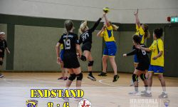 Laager SV 03 Handball wJD - SV Warnemünde