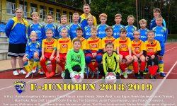 Laager SV 03 E - 2018/2019