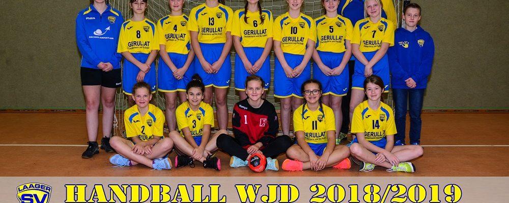 Handball wJD