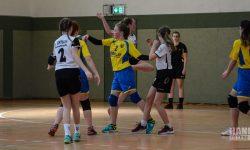 Laager SV 03 Handball wJD - SV Eintracht Rostock