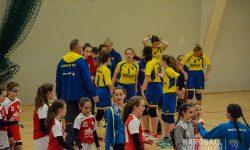Laager SV 03 Handballl wJD - Bezirkspokal